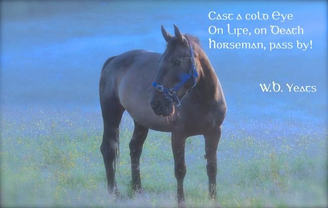 Horseman, pass by!