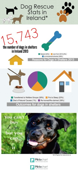 Dog Rescue Stats in Ireland 2013. ©agsmaoineamh.com