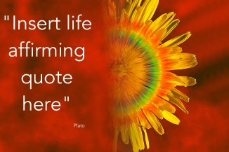 life affirming quote