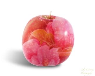 apple layer 2