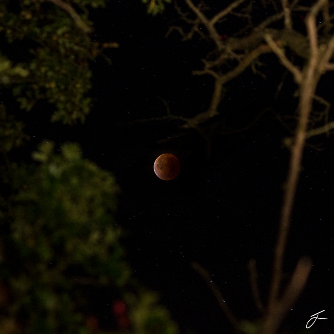 Blood Red Moon 1