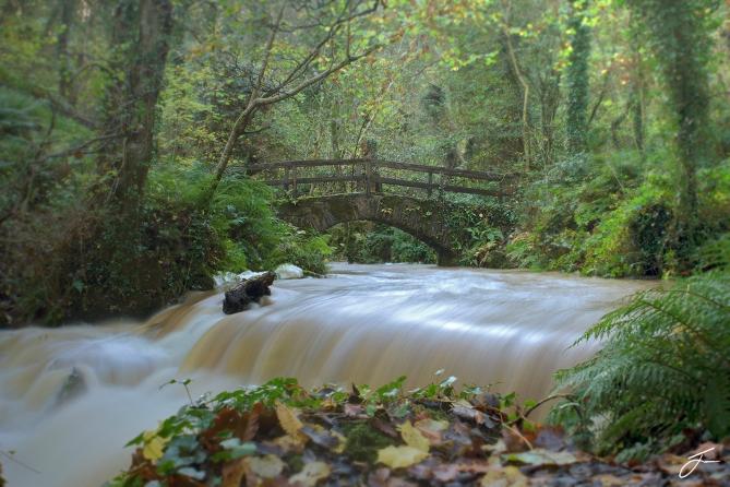 bridge colour after rain
