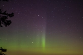 Aurora begins