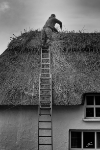 Vinny the Thatcher replacing the ridge of a thatched roof. Image © Julie Corcoran 2016.